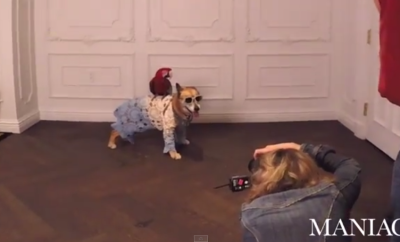 Chloe Hubal behind the scenes for Maniac Magazine dog issue